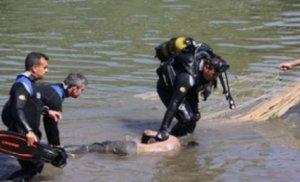 Tovuzda dəhşətli qətl: Gənc oğlanın meyiti kanaldan tapıldı