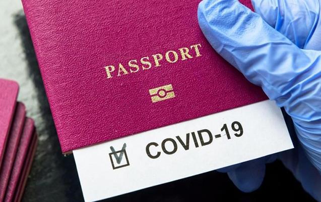 Göyçayda saxta COVID pasportu satan tibb işçiləri saxlanıldı