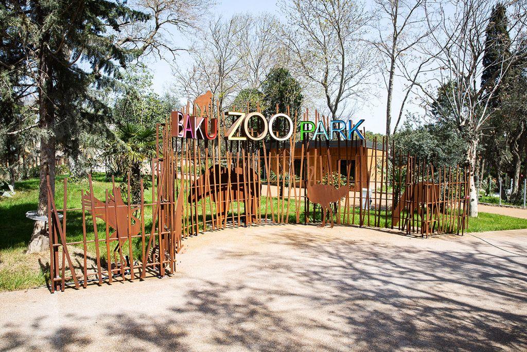 Bakı zooparkı ziyarətçilər üçün açıldı: qiymətlər, qaydalar…